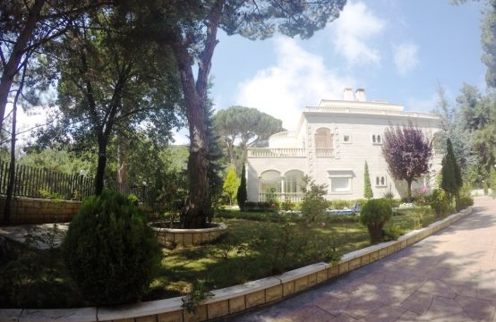 Amazing Villa for Sale in Daher El Souwan FC812